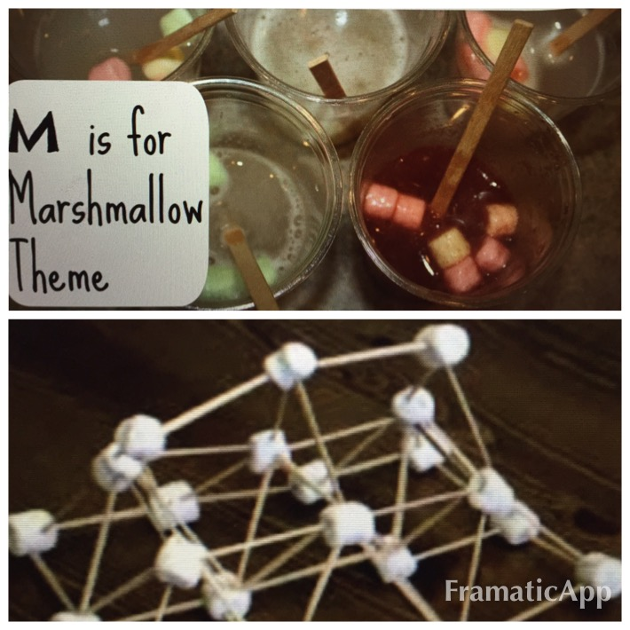 Crafts with Christa Marshmallow Science